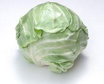 Green cabbage picture